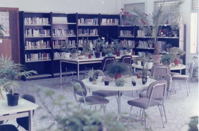 Biblioteca Polinya1986